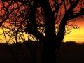 Sončni zahod-FOTO slavkko kohek